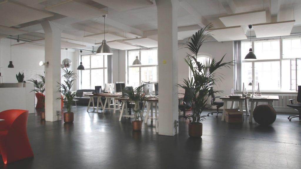 designova-kancelar-kvety-rostliny-lampy-stoly-zidle-okna