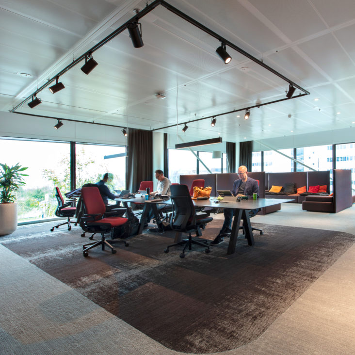 kancelar-koberec-svetla-okna-rostliny-zamestnanci-stul-zidle